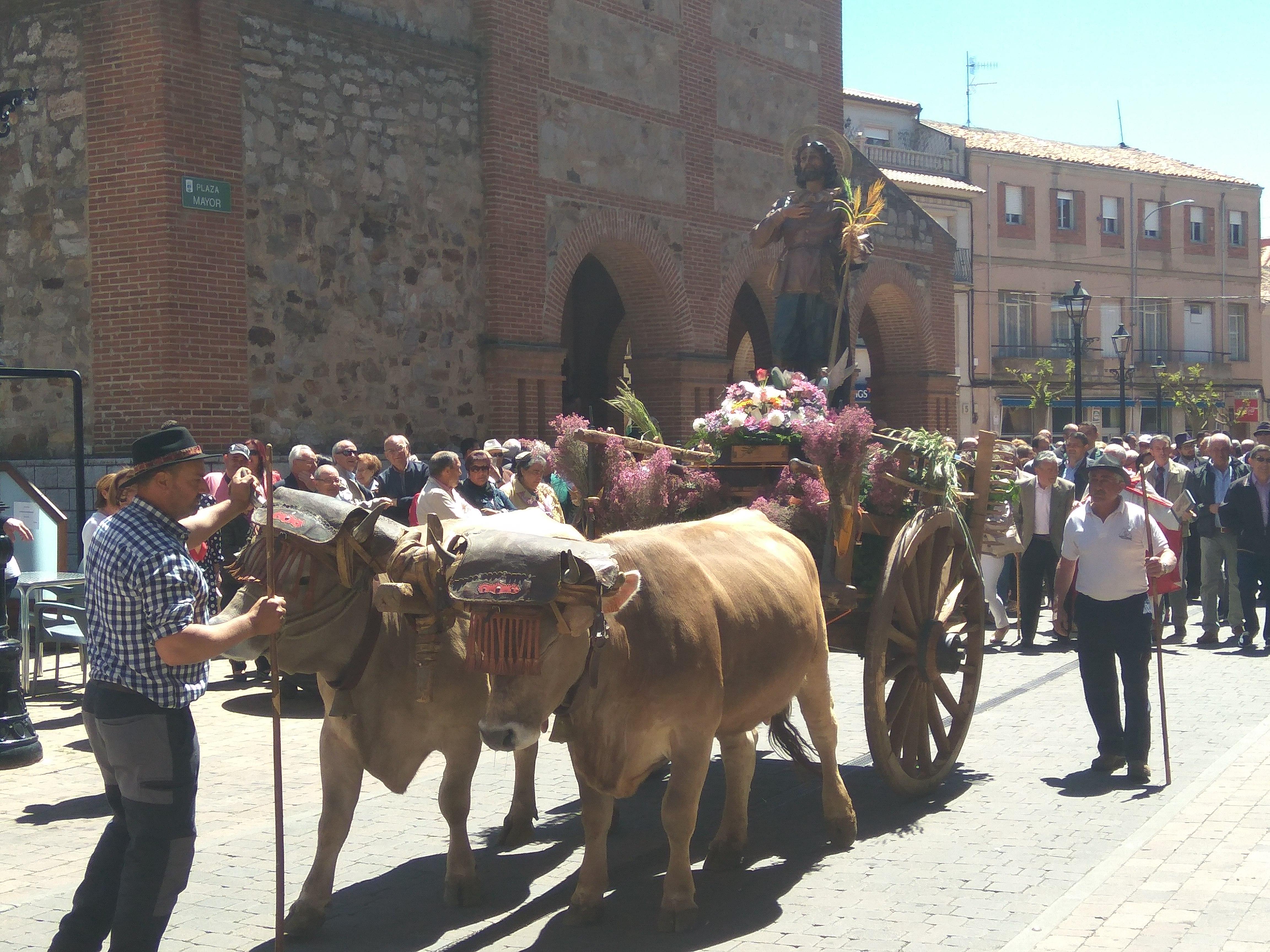 Festividad de San Isidro Labrador II